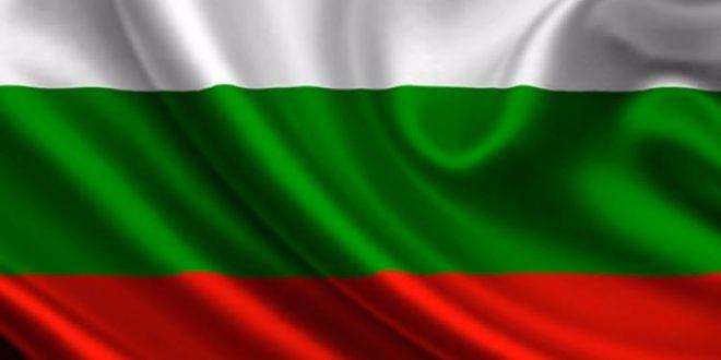 Bulgaristan Genelkurmay Başkanı istifa etti